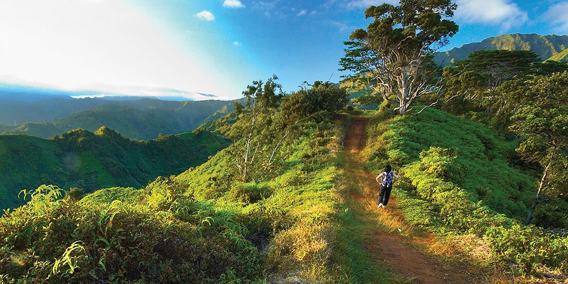 hiker on mountain trail in Kauai